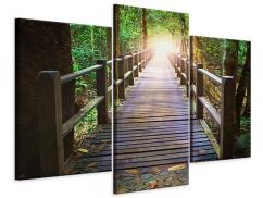 Leinwandbild 3-teilig modern Die Brücke im Wald