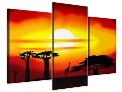 Leinwandbild 3-teilig modern Faszination Afrika