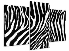 Leinwandbild 3-teilig modern Zebramuster