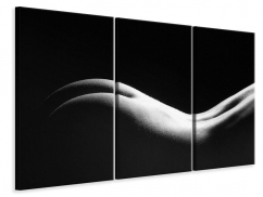 Leinwandbild 3-teilig Nude