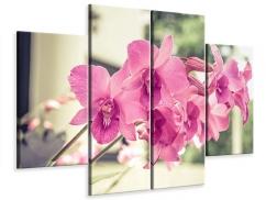 Leinwandbild 4-teilig Ein Fensterplatz für die Orchideen