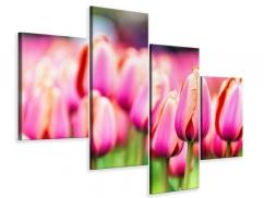Leinwandbild 4-teilig modern Pretty in Pink