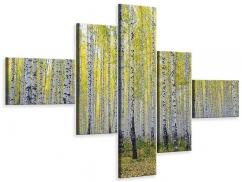 Leinwandbild 5-teilig modern Herbstlicher Birkenwald