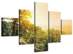 Leinwandbild 5-teilig Sonnenuntergang in der Natur