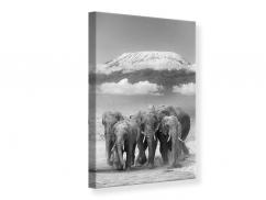 Leinwandbild Elefantenherde