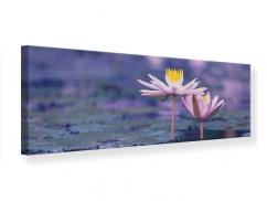Leinwandbild Panorama Lotus Duo im Sonnenaufgang