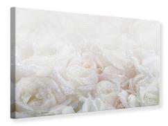 Leinwandbild Weisse Rosen im Morgentau