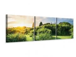 Panorama Leinwandbild 3-teilig Sonnenaufgang im Park