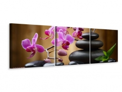 Panorama Leinwandbild 3-teilig Wellness-Steine