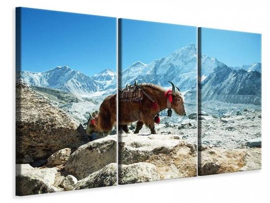 Leinwandbild 3-teilig Das Himalaya-Gebirge