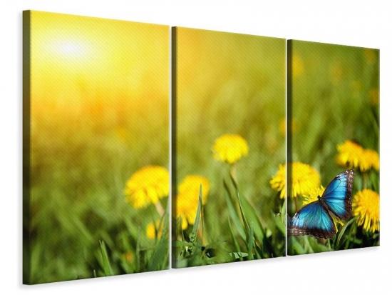 Leinwandbild 3-teilig Der Löwenzahn und der Schmetterling