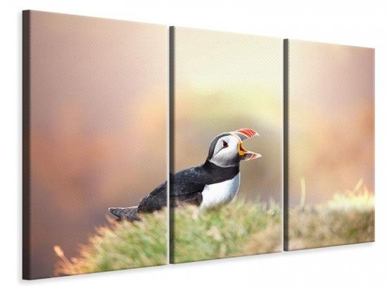 Leinwandbild 3-teilig Der Papageitaucher