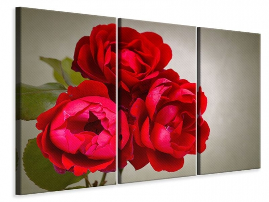 Leinwandbild 3-teilig Drei rote Rosen