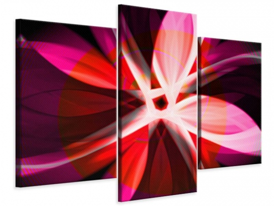 Leinwandbild 3-teilig modern Abstrakt Flower Power