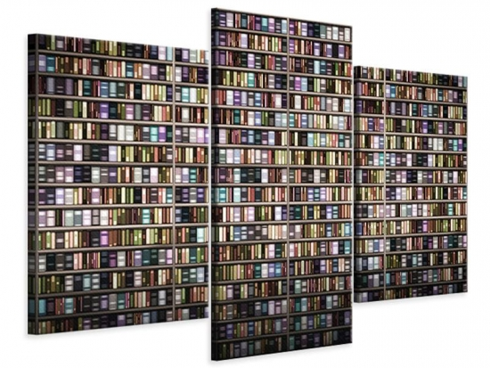 Leinwandbild 3-teilig modern Bücherregal