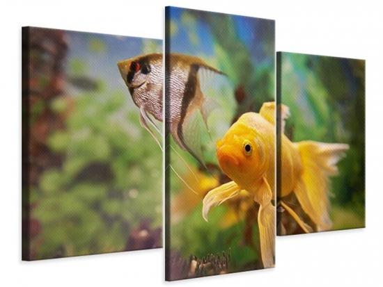 Leinwandbild 3-teilig modern Bunte Fische