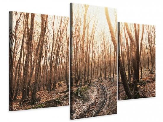 Leinwandbild 3-teilig modern Der kahle Wald