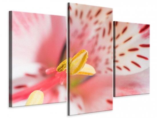 Leinwandbild 3-teilig modern Der Lilienstempel