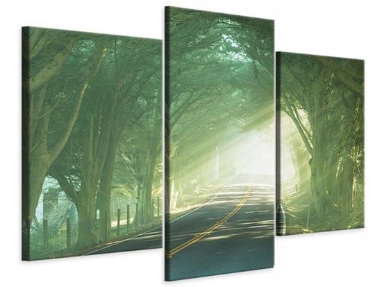 Leinwandbild 3-teilig modern Die Allee