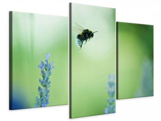 Leinwandbild 3-teilig modern Die Biene