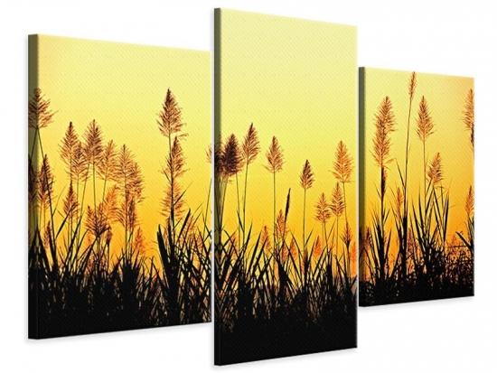 Leinwandbild 3-teilig modern Die Blumen des Feldes