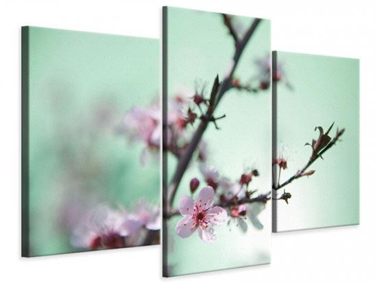 Leinwandbild 3-teilig modern Die japanische Kirschblüte