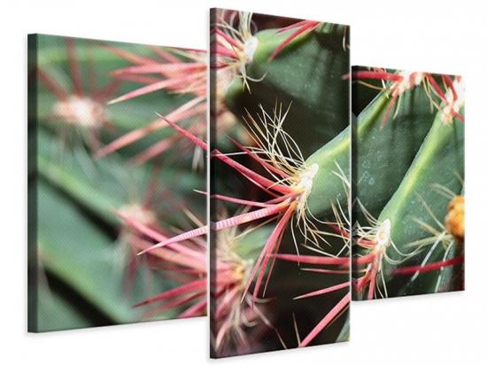 Leinwandbild 3-teilig modern Die Kaktusblüte