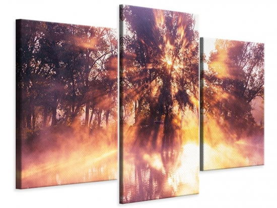 Leinwandbild 3-teilig modern Die Waldspiegelung