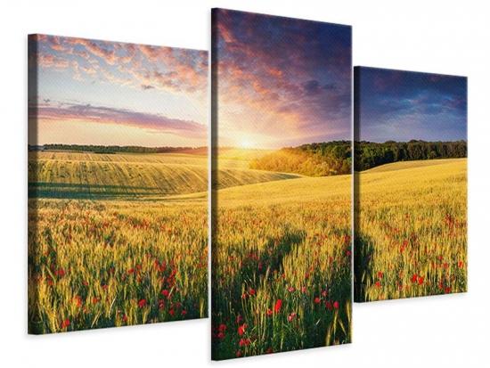 Leinwandbild 3-teilig modern Ein Blumenfeld bei Sonnenaufgang