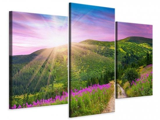 Leinwandbild 3-teilig modern Eine Sommerlandschaft bei Sonnenaufgang