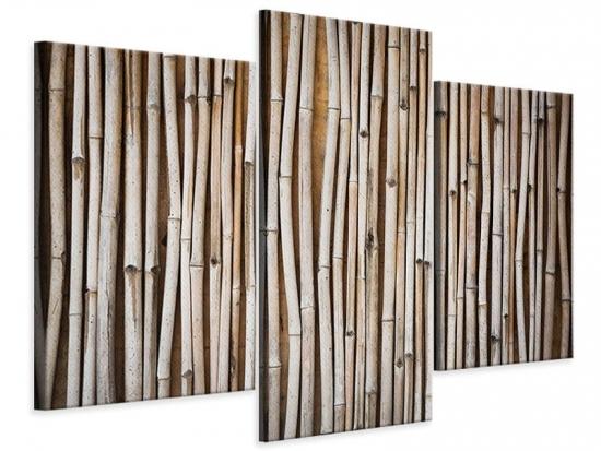 Leinwandbild 3-teilig modern Getrocknete Bambusrohre