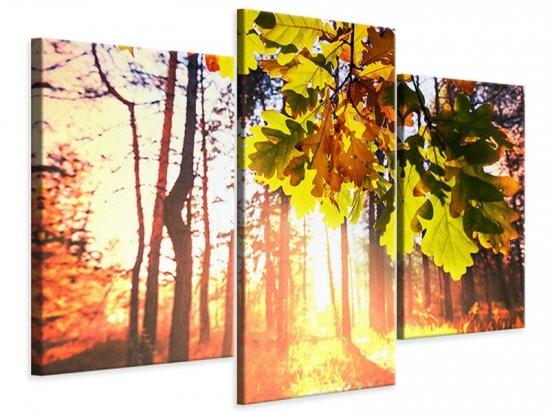 Leinwandbild 3-teilig modern Herbst