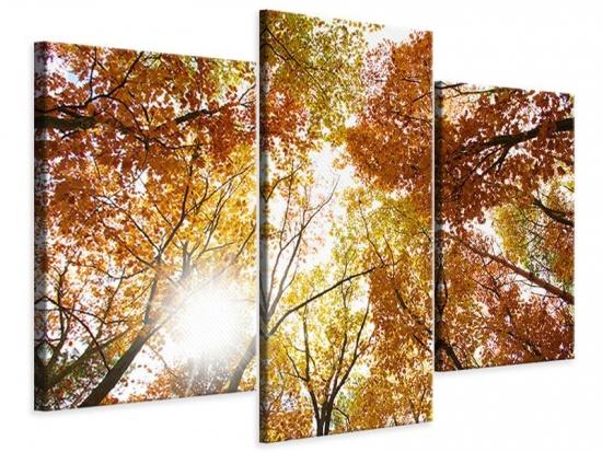 Leinwandbild 3-teilig modern Herbstbäume
