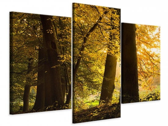 Leinwandbild 3-teilig modern Herbstlaub