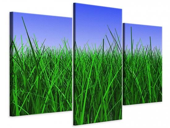 Leinwandbild 3-teilig modern Im Gras