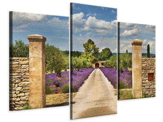 Leinwandbild 3-teilig modern Lavendel-Garten