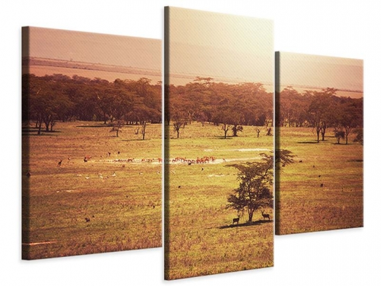 Leinwandbild 3-teilig modern Malerisches Afrika