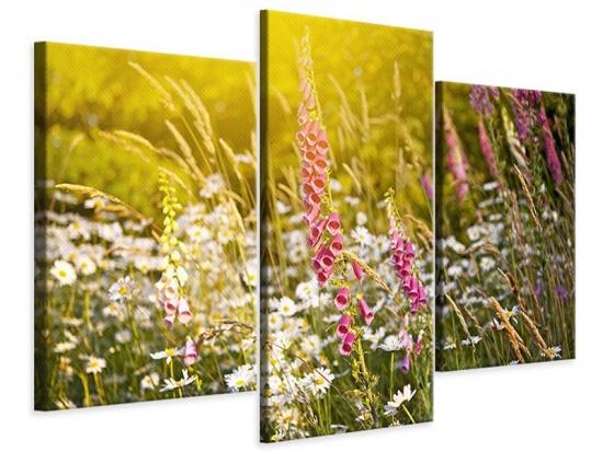 Leinwandbild 3-teilig modern Sommerliche Blumenwiese