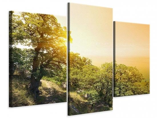 Leinwandbild 3-teilig modern Sonnenuntergang in der Natur