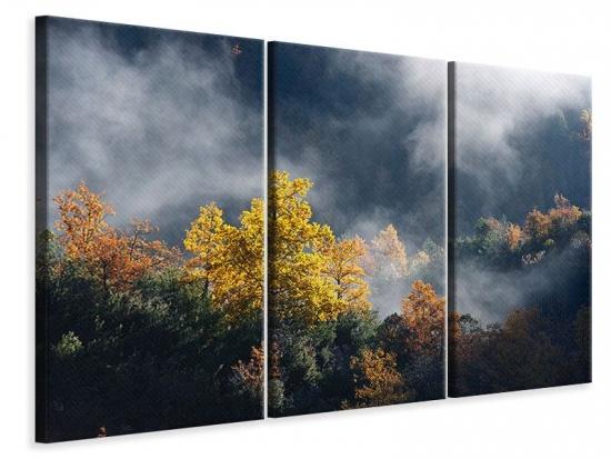 Leinwandbild 3-teilig Mondscheinwald
