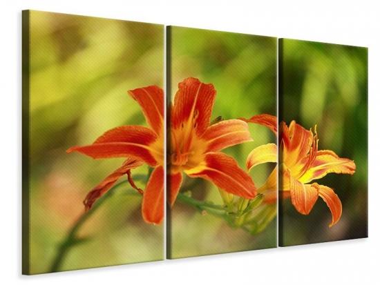 Leinwandbild 3-teilig Natural Lilien