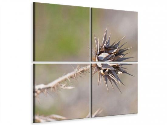 Leinwandbild 4-teilig Die Wüstenblume