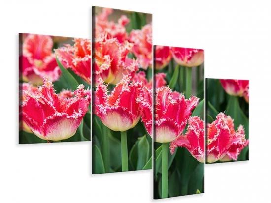 Leinwandbild 4-teilig modern Die Tulpenwiese