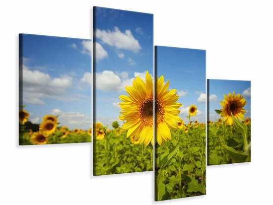 Leinwandbild 4-teilig modern Sommer-Sonnenblumen