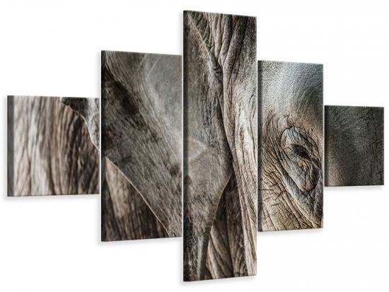 Leinwandbild 5-teilig Close Up Elefant