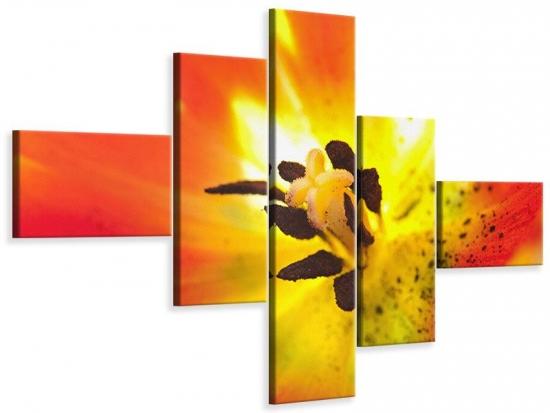 Leinwandbild 5-teilig modern Die Narbe einer Tulpe XXL