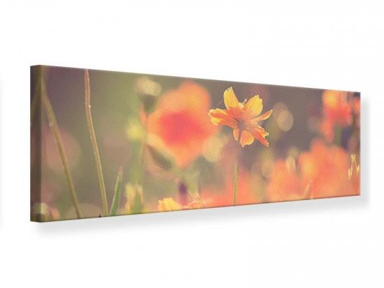Leinwandbild Panorama Blütenpracht