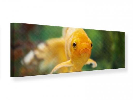 Leinwandbild Panorama Der Fisch