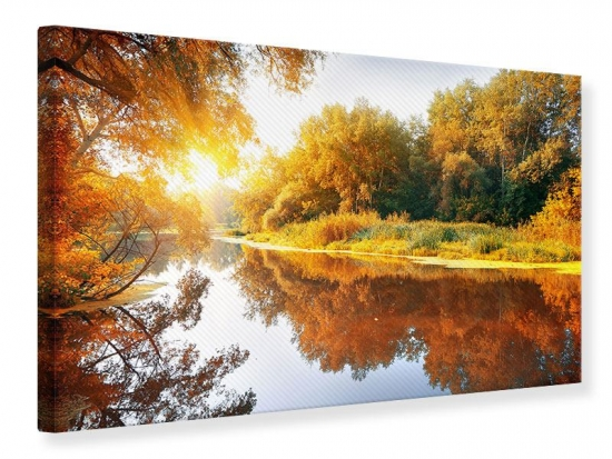 Leinwandbild Waldspiegelung im Wasser